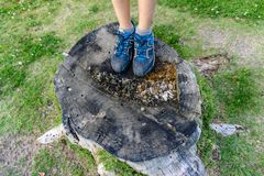 Close-up of teenager walker feet walking on forest. stock images