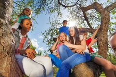 Close-up of teenagers sitting together on tree Royalty Free Stock Images