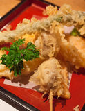 Close up of a tempura plate. Assorted tempura served on a red plate Stock Photos