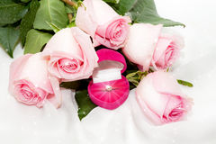 Close-up of tender pink roses, diamond ring Stock Images