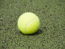 Close-up of tennis ball on green court. Tennis ball on real court surface painted green royalty free stock photography
