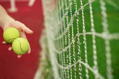 Close up of tennis balls in hands on tennis court. stock photos