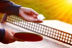 Close up of tennis player hands with tennis racket on nature background in sunny day.Closeup shot of a man serving in. Table tennis. Outdoor tennis table play Royalty Free Stock Photos