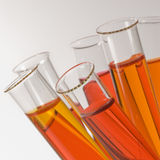 Close-up of test tubes. With orange liquids Royalty Free Stock Photography
