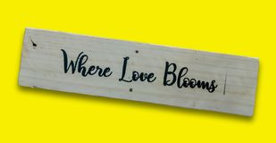 Close up texts `When Love Blooms. ` on wooden board, Love and valentine`s day concept background royalty free stock photography