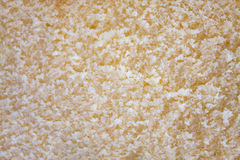 Close up Texture of butter cake Stock Images