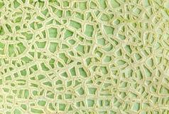 Close up texture of cantaloupe melon peel Royalty Free Stock Photo