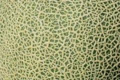 Close up  Texture of cantaloupe Stock Photos