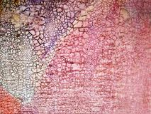 Texture colored strokes oil paints royalty free stock photography