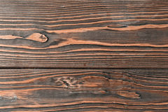 Close-up texture larch wood Stock Photography