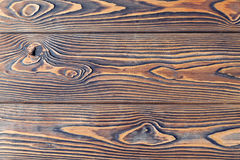 Close-up texture larch wood Stock Images