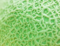 Close Up Texture Of Melon. Royalty Free Stock Images