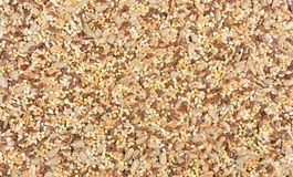 Close up of a texture multigrain royalty free stock images