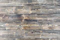 Close-up texture pine wood Royalty Free Stock Image