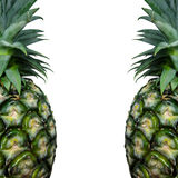 Close up texture of pineapple background with copy space Royalty Free Stock Photography