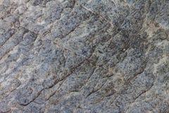 Close up texture of rock Stock Image