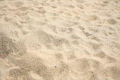 Texture sand background. Close up Texture sand background stock photos