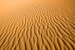 Close up of the texture of a sand dune royalty free stock image