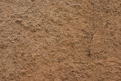 Close up of textured wet sand. Close up of the texture of wet construction sand, showing rounded, crusted surface structures Stock Images