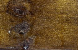 Close Up of textured wooden plank covered with frost and ice. Backgrounds and texture concept with copy space royalty free stock photos