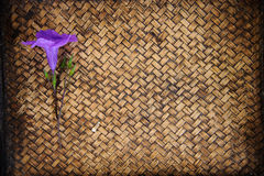 Close up Thai flower on bamboo mat Stock Photo