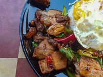 Close-up, Thai food:& x22;Kao Pad Kra Prao& x22;fried basil crispy pork stock image