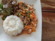 Close-up,Thai food style:& x22;Kaow Moo Tun Pad Thai& x22;fied pork,egg Stock Images