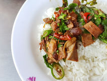 Close-up,Thai food style:Pad Kra Pao Kha Moo, spicy stir-fried royalty free stock images