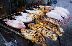 Close up of thai street food barbecue with salted fishes on charcoal grill - Bangkok, Thailand royalty free stock photo