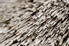 Close up of thatched roof in Brittany France. Close up of traditional thatched roof with dried reeds in Brittany France Royalty Free Stock Photography