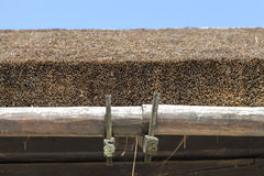 Close up of thatched roof Royalty Free Stock Photography
