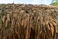 Close up of Thatched roof royalty free stock photo
