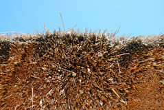 Close-up of thatched roof under the blue sky Royalty Free Stock Photos