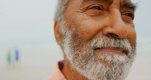 Close-up of thoughtful active senior African American man standing on the beach 4k stock video