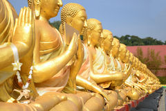 Close up of Thousand Golden Buddha statues Royalty Free Stock Photos
