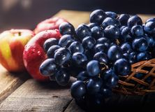 Still life with apples and grapes. Black grapes and red apples on the table in the basket Royalty Free Stock Photography