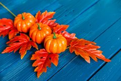 Three plastic pumpkins and red leaves fall concept Stock Photography