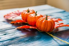 Three plastic pumpkins and red leaves fall concept Stock Image