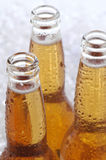 Close up of Three Beer Bottles royalty free stock photos