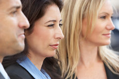 Close Up Of Three Business Colleagues Royalty Free Stock Image