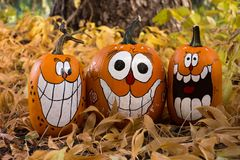 Three Pumpkins with Tree Trunk Royalty Free Stock Image