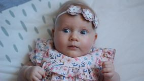Three Months Old Baby Girl With Blue Eyes. Newborn Child, Little Adorable Peaceful and Attentive Girl Looking Surprised Smiling at. Close-up of a Three Months stock video