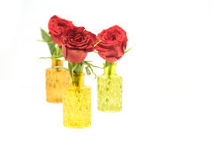 Close up of three red roses in glass vases Royalty Free Stock Image