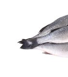 Close up of three tails fresh seabass fish. Stock Photography