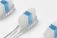 Close up of three toothbrushes. Selective focus close up of three clear toothbrush heads with white and blue bristles Stock Image