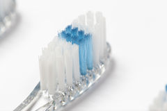 Close up of three toothbrushes. Selective focus close up of three clear toothbrush heads with white and blue bristles Stock Photography