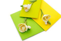 Close up of three yellow envelope with flowers Stock Photos