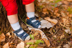 A close-up of tiny baby feet Royalty Free Stock Image