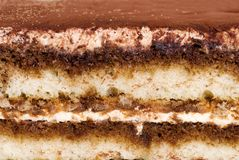 Close up tiramisu cake making a background Stock Images