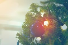 Close up to lights decorations on Christmas tree. Happy New Year and Xmas theme Stock Image